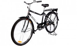 Weelz-WBR-Buffalo-Bike (3)
