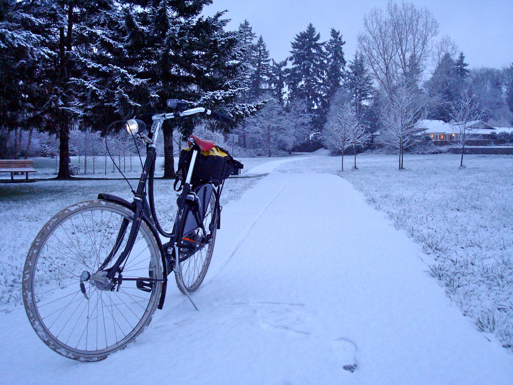 Le Winter Bike to Work Day 2015 ! Bravez le froid à vélo !