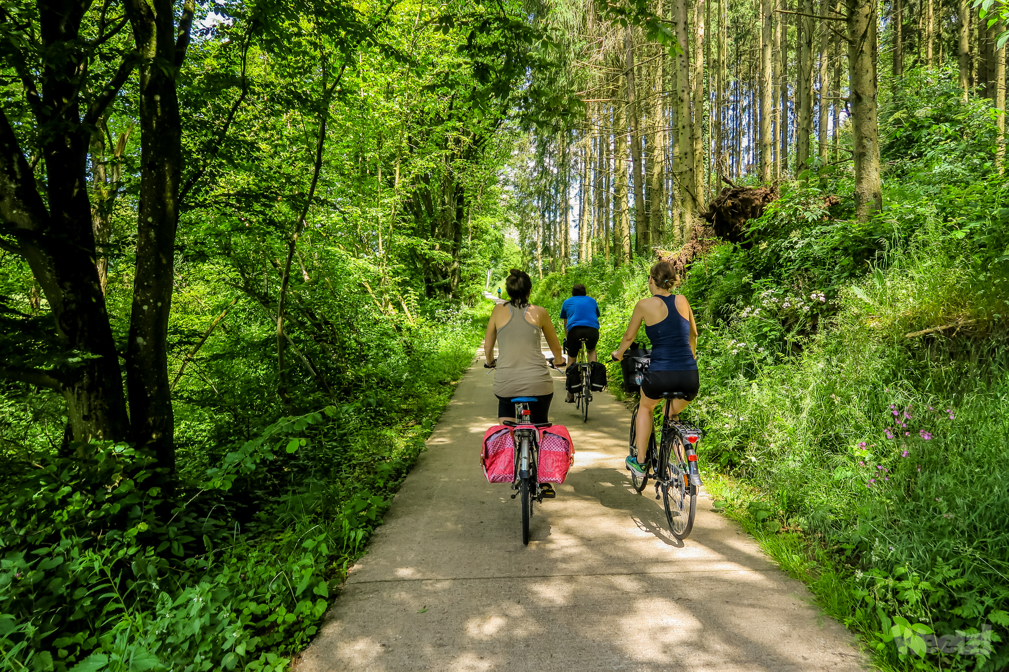 Weelz Velo Tourisme Luxembourg Ouest 2018 2055