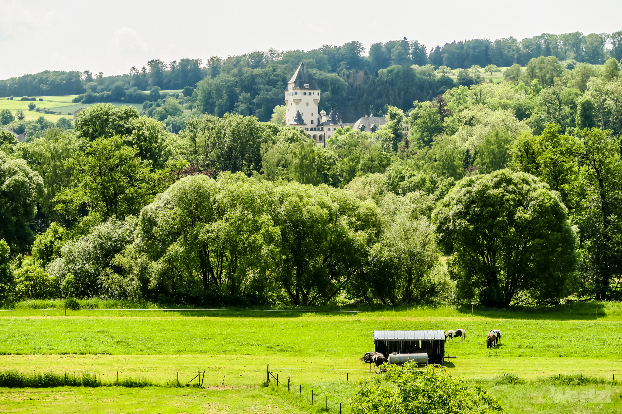 Weelz Velo Tourisme Luxembourg Ouest 2018 2073